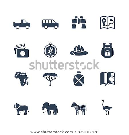 Stockfoto: Vector · safari · geïsoleerd · witte · boom