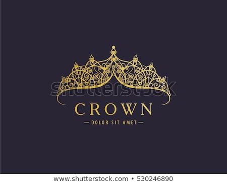 Elegant diamond princess diadem, vector illustration Stock photo © carodi