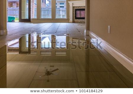 Ház áradás tulajdon biztosítás izolált fehér Stock fotó © orensila