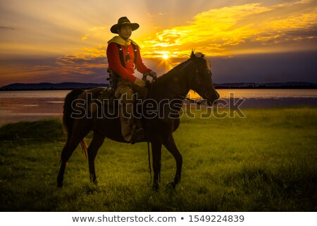 Mensen paardenrug zonsondergang illustratie natuur woestijn Stockfoto © adrenalina
