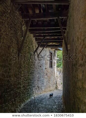 歩行者 トンネル 岩 古い 旧市街 ストックフォト © Steffus