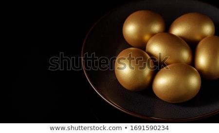 golden chicken egg closeup stock photo © oleksandro