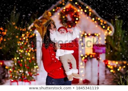 red fox family at Christmas hat Stock photo © adrenalina