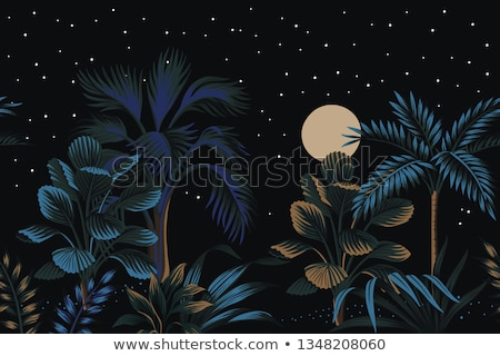 Star night tree, vector illustration Stock photo © carodi
