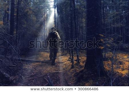 Katona erdő illusztráció fák háború fiú Stock fotó © bluering