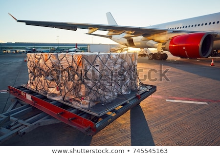 cargo airplane at the sunset stock photo © tracer