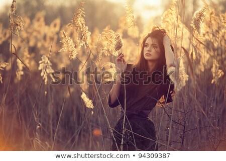 Divat fotó modell testművészet szokatlan művészet Stock fotó © deandrobot