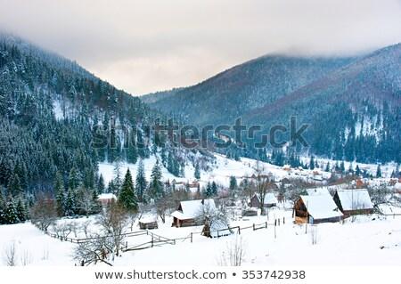 automne · paysage · bois · clôture · montagne · village - photo stock © joyr