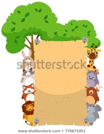Papír sablon aranyos állatok mindkettő természet nyúl Stock fotó © bluering
