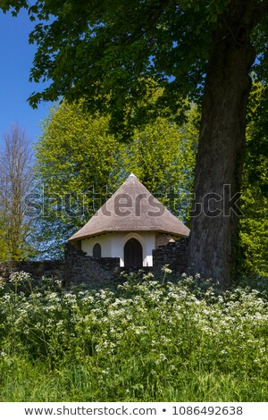 Glace maison bataille abbaye sussex Angleterre Photo stock © smartin69