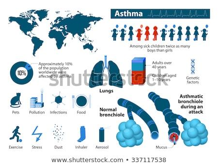 asthma diagram stock photo © lightsource