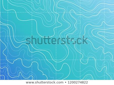 Blauw witte contour lijnen abstract patroon Stockfoto © SArts