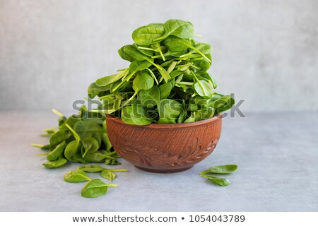 bowl of fresh spinach stock photo © digifoodstock