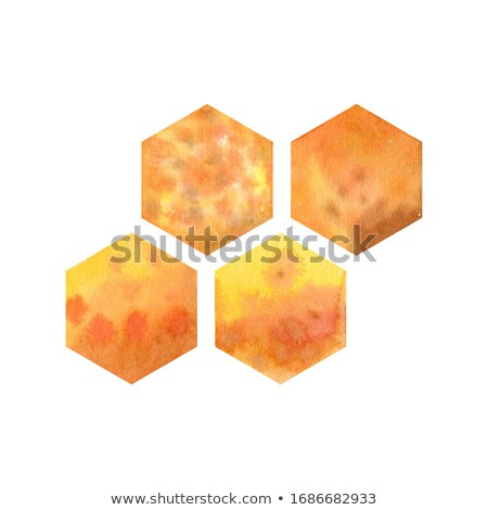 Honey comb. fragment of honeycomb, Abstract background. stock photo © FreeProd