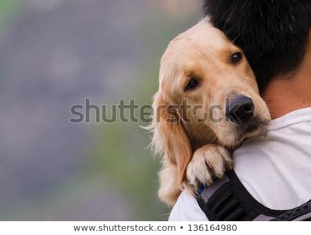 animal dog man_sickness Stock photo © toyotoyo