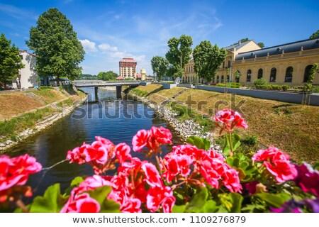Vukovar city view from Vuka river bridge Stock photo © xbrchx