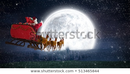 Santa Claus and reindeer in Christmas night Stock photo © liolle