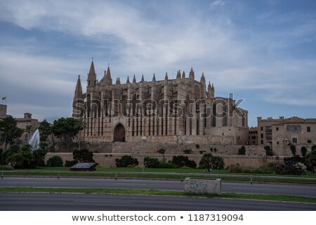 Exterior of Cathedral of Palma de Mallorca or La Seu. Spain Stock photo © amok