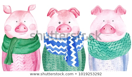 watercolor style happy chinese new year 2019 of pig design stock photo © sarts