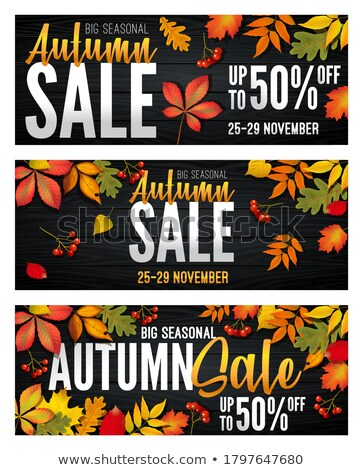Mega Sale Promo Posters Set with Text Maple Leaves Stock photo © robuart