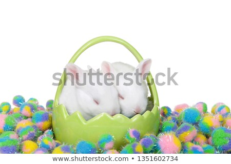 sleeping easter bunny theme image 2 stock photo © clairev