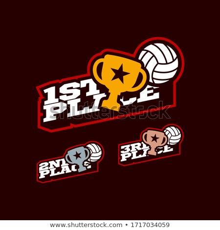 Voleibol juego adjudicación establecer vector pelota Foto stock © pikepicture