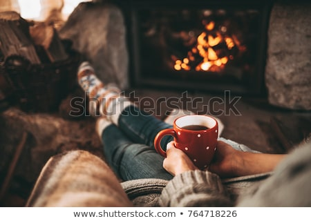 christmas · vrienden · viering · eengezinswoning · huis · meisje - stockfoto © robuart