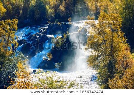 Mooie vol watervallen regen geluid Stockfoto © lovleah