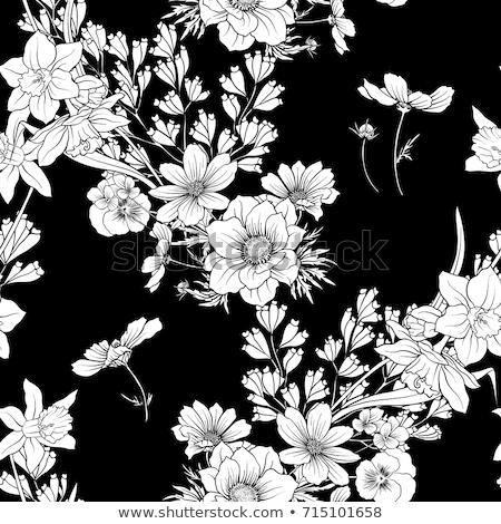 Siyah beyaz perde örnek kullanılmış Japon Stok fotoğraf © Blue_daemon