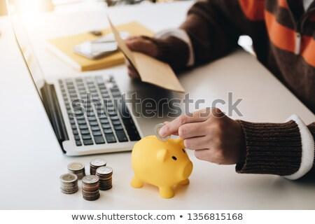 Stockfoto: Zakenvrouw · munten · spaarvarken · calculator · analyse · business