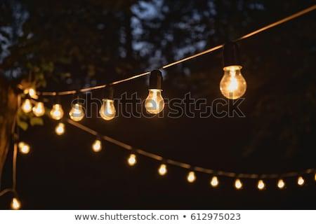 Beautiful retro luxury light lamp decor glowing. Garland Light Bulb. Stock photo © ruslanshramko
