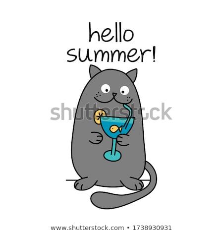 Hallo zomer tekst cute kat goudvis Stockfoto © Zsuskaa