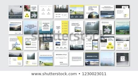 Pr aplicativo interface modelo digital Foto stock © RAStudio