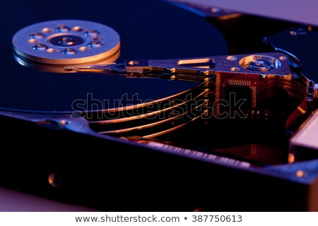 destructed open hard disk Stock photo © gewoldi