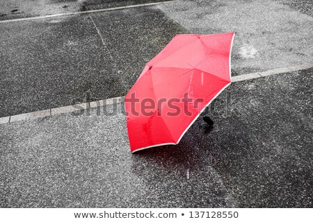 rainy view from under umbrella stock photo © morrbyte