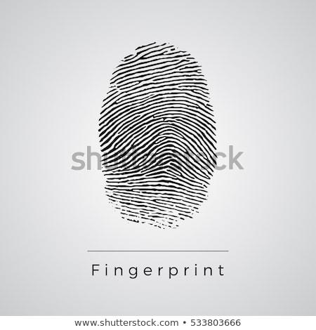 Finger Print with key Stock photo © 3523studio