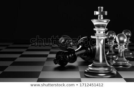 Schaakmat schaken spel witte koning permanente Stockfoto © courtyardpix
