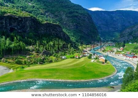 реке · береза · деревья · дерево · трава · природы - Сток-фото © gewoldi