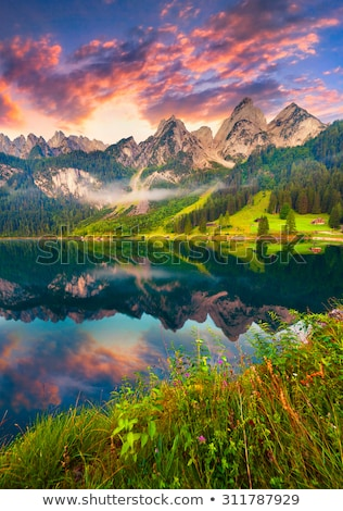 Colorful landscape. Vertically. Stock photo © frank11