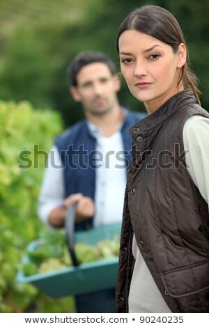 uvas · mujer · verde · de · trabajo · hojas - foto stock © photography33