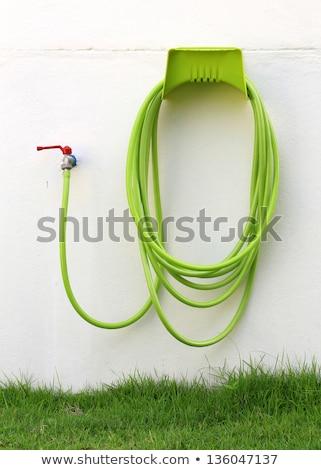 zöld · citromsárga · kert · víz · locsoló · izolált - stock fotó © deymos