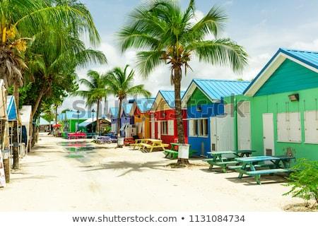 Barbados kaart groene Blauw Rood Stockfoto © tshooter