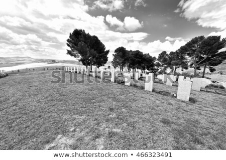 White Marble Military Style Headstone or Gravestone Stock photo © pixelsnap
