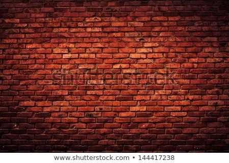 red bricks and trowe Stock photo © Marfot