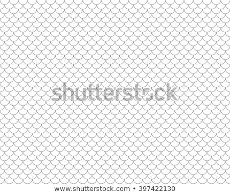 vecteur · échelle · modèle · sombre · propre - photo stock © filip_dokladal