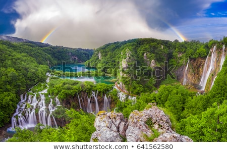 湖 クロアチア 水 公園 風景 木 ストックフォト © bayberry
