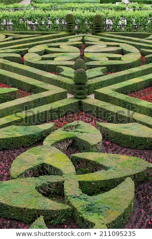 splendid decorative gardens at castles in the valley of loire stock photo © wjarek
