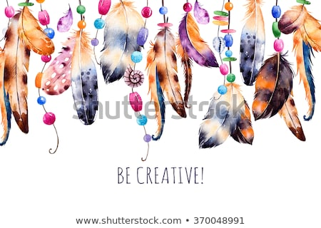 tavuskuşu · tüy · detay · renkli · yalıtılmış · beyaz - stok fotoğraf © kayco