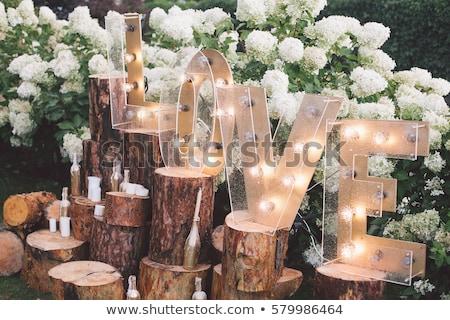 boda · fiesta · brindis · mujer · amor · pared - foto stock © adrenalina
