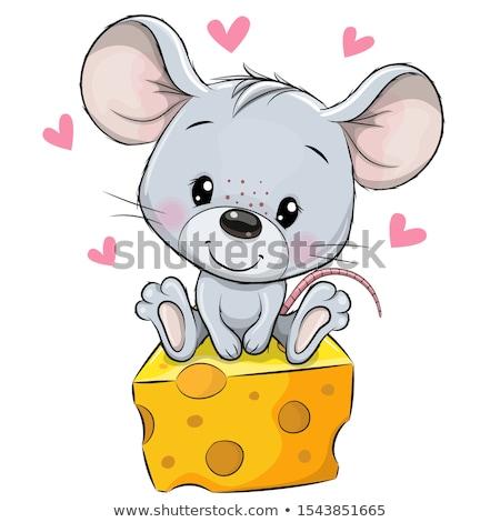 Funny gray mouse and cheese stock photo © aliaksandra